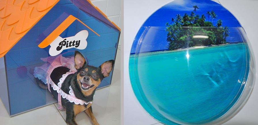 Casinha de cachorro em acrílico, da Emporium. E Aquário de parede em acrílico, da Design Laser.