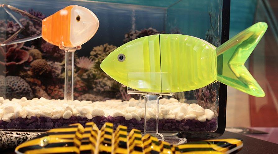 Projeto de Peixes em Acrílico